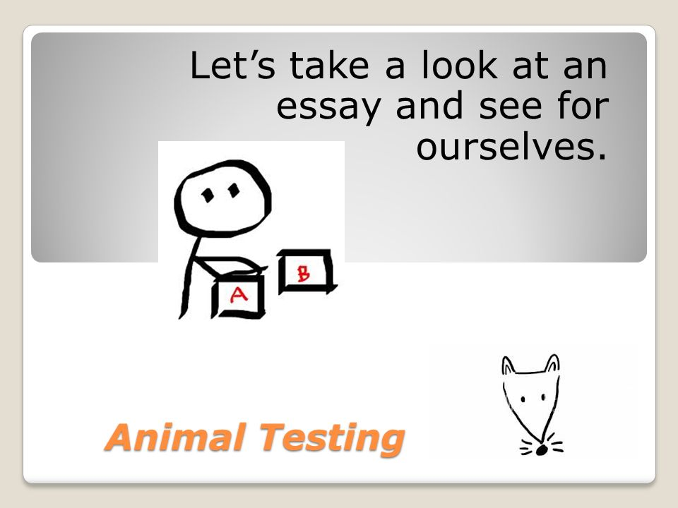 animal testing essay Animal testing can be defined as the process of using animals in experiments normally the research such as biomedical researches, drug tests and toxicology tests are conducted in universities, medical schools, and pharmaceutical companies.