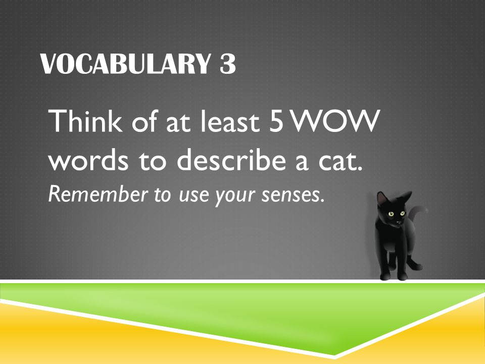 What are some words that describe a cat?