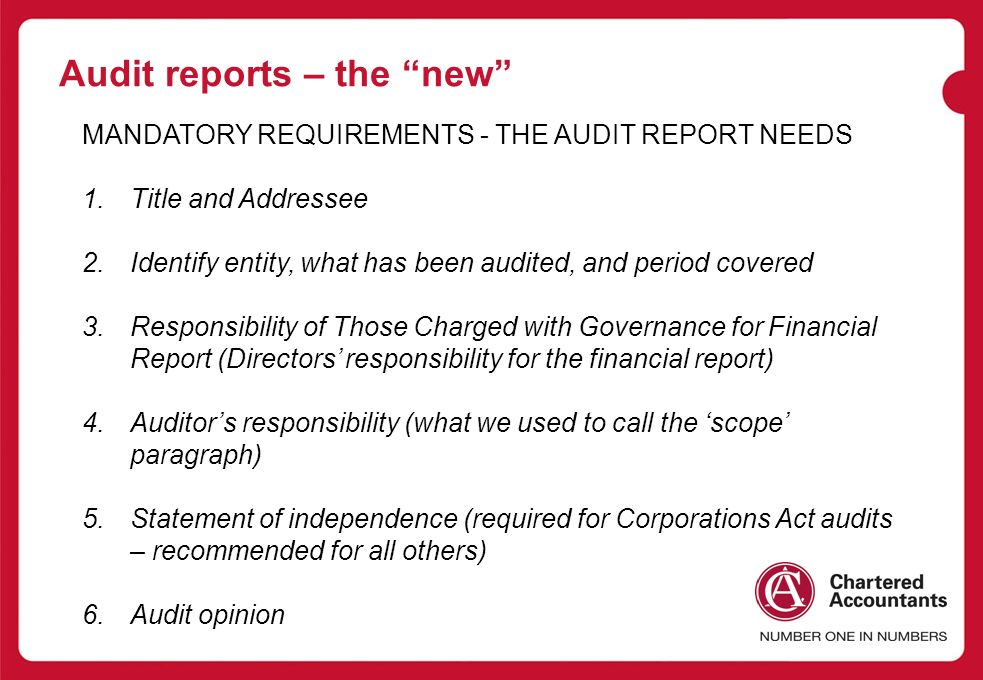 Chartered Accountants Audit Conference Problem Audit Reports