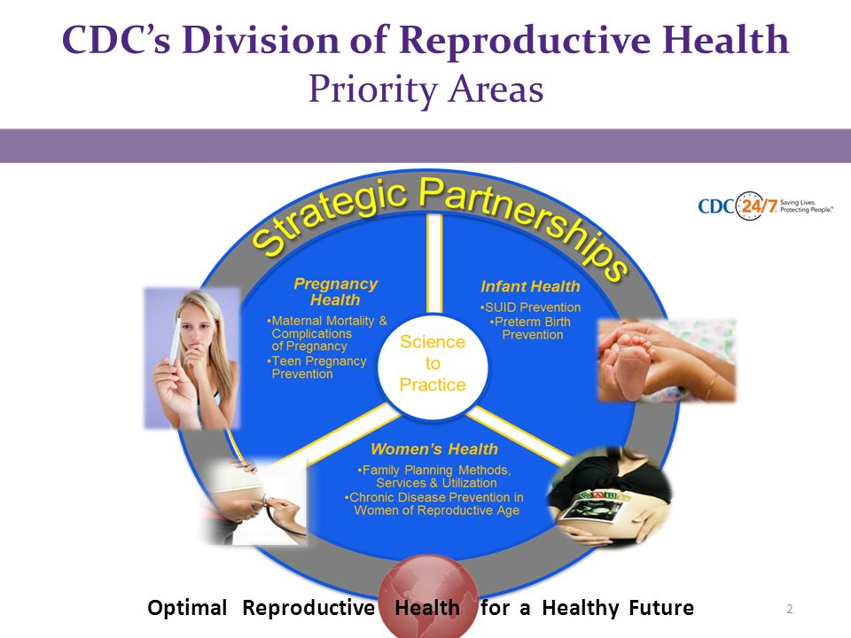 CDC's Division of Reproductive Health Priority Areas 2 Optimal Reproductive Health for a Healthy Future
