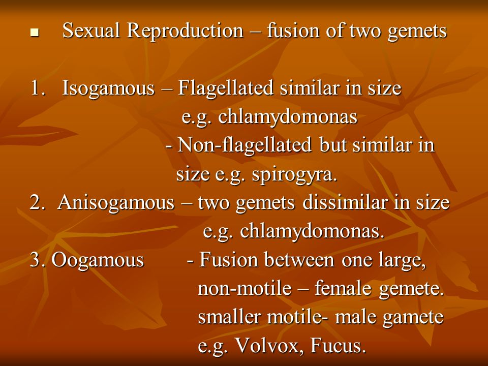 Sexual Reproduction – fusion of two gemets Sexual Reproduction – fusion of two gemets 1.