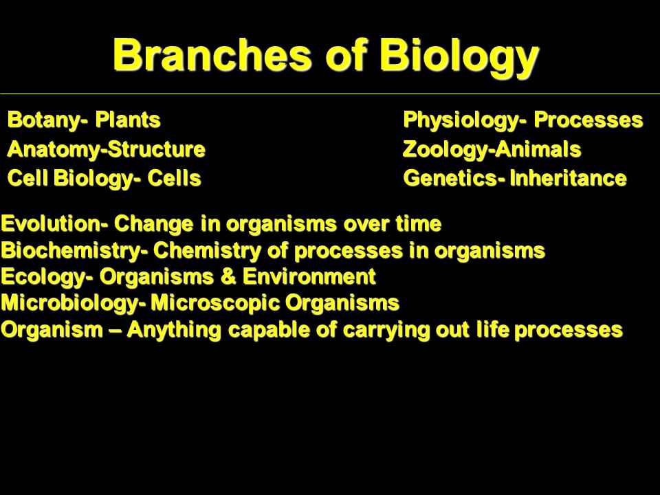 Branches of Biology Botany- PlantsPhysiology- Processes Anatomy-StructureZoology-Animals Cell Biology- Cells Genetics- Inheritance Evolution- Change in organisms over time Biochemistry- Chemistry of processes in organisms Ecology- Organisms & Environment Microbiology- Microscopic Organisms Organism – Anything capable of carrying out life processes