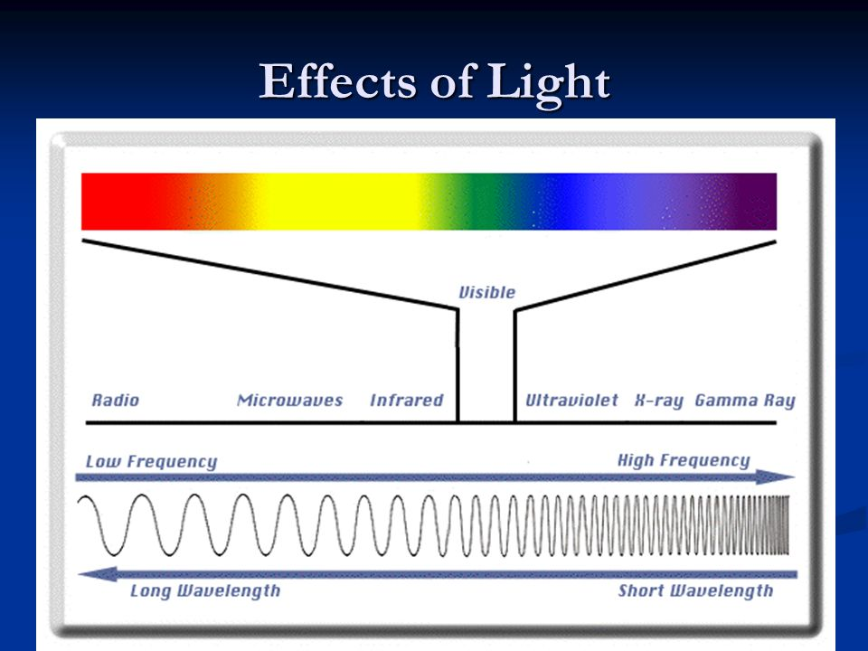 Effects of Light