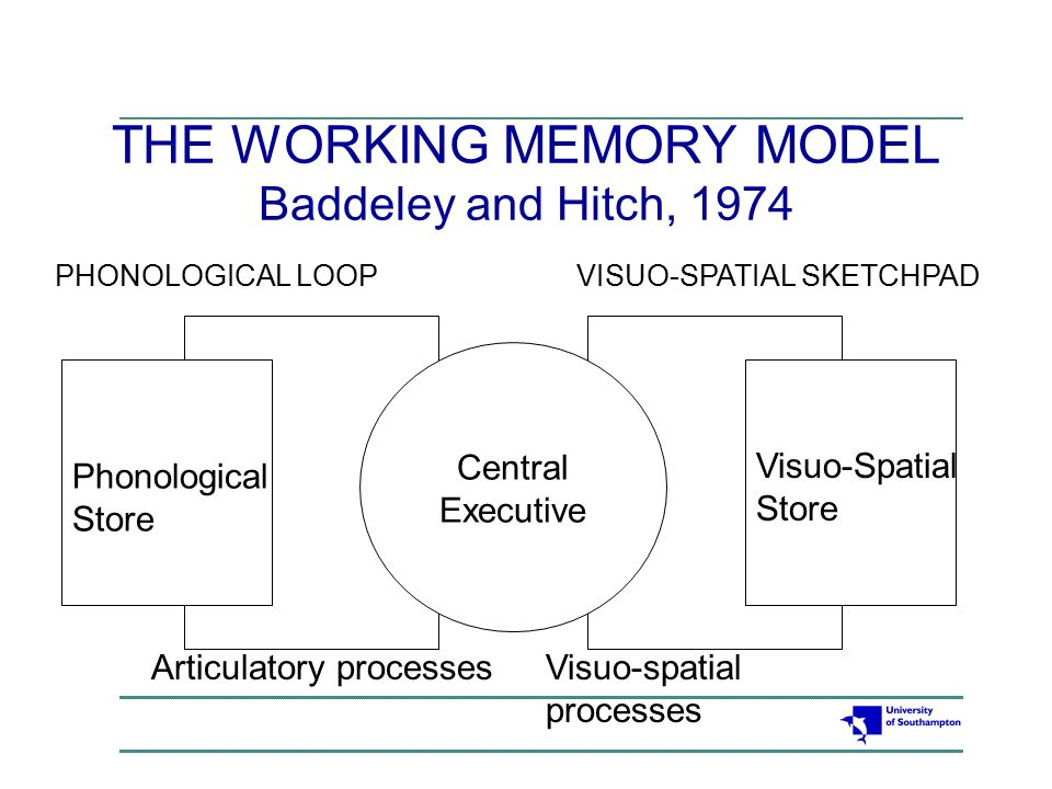 outline and evaluate the working memory model essay Working outline example home page view full essay similar essays outline and evaluate the working memory model of memory.