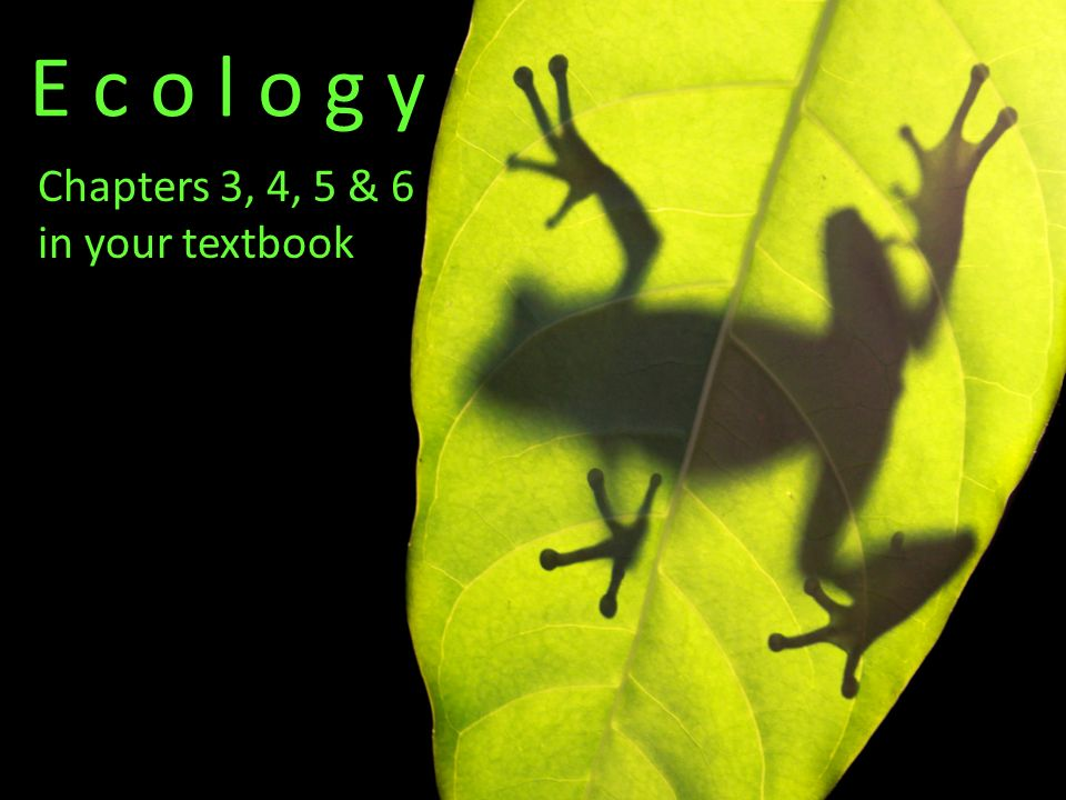 E c o l o g y Chapters 3, 4, 5 & 6 in your textbook