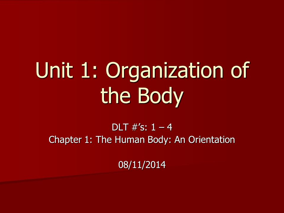 Unit 1: Organization of the Body DLT #'s: 1 – 4 Chapter 1: The Human Body: An Orientation 08/11/2014