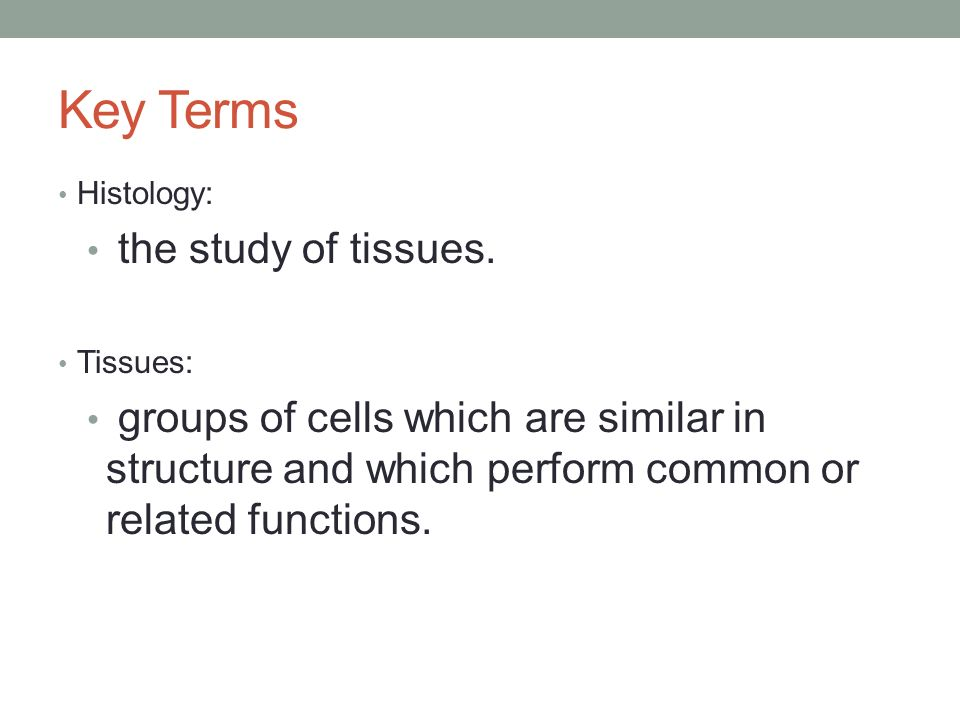 ANATOMY AND PHYSIOLOGY I Tissue Types. Key Terms Histology: the ...