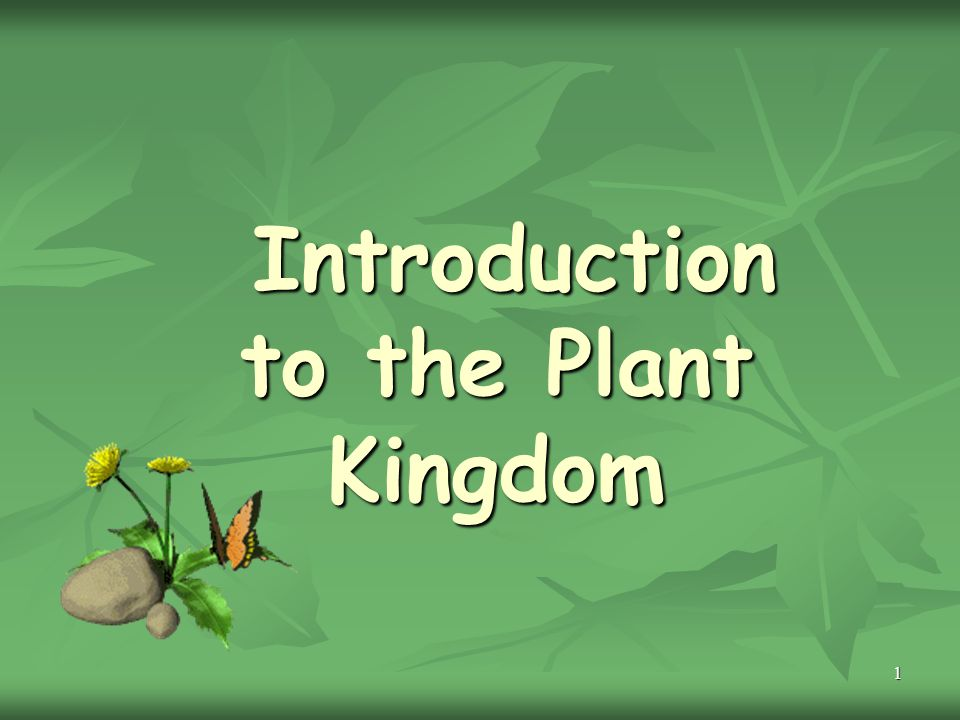 1 Introduction to the Plant Kingdom Introduction to the Plant Kingdom