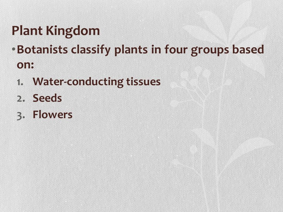 Plant Kingdom Botanists classify plants in four groups based on: 1.Water-conducting tissues 2.Seeds 3.Flowers
