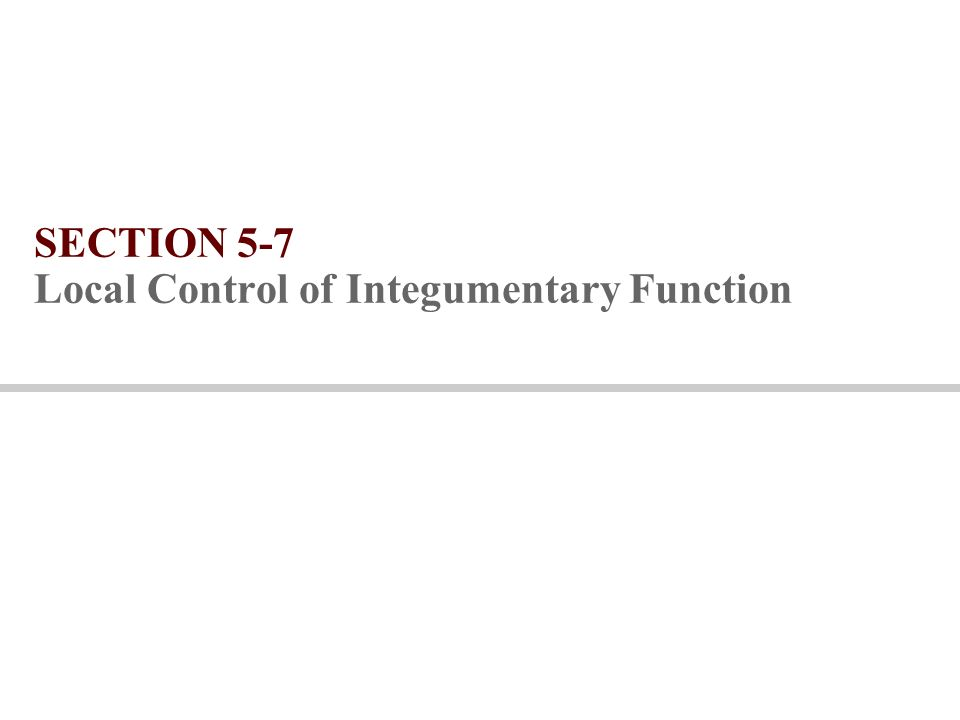 SECTION 5-7 Local Control of Integumentary Function