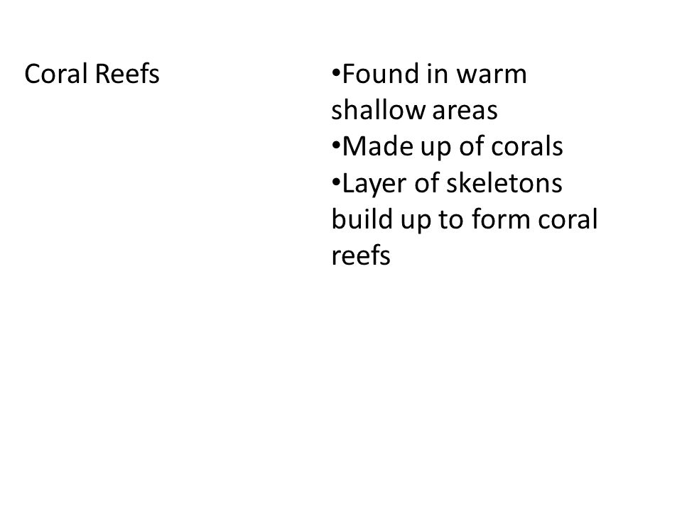 Coral Reefs Found in warm shallow areas Made up of corals Layer of skeletons build up to form coral reefs