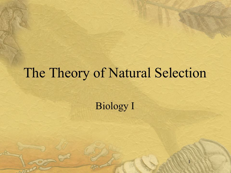 1 The Theory of Natural Selection Biology I