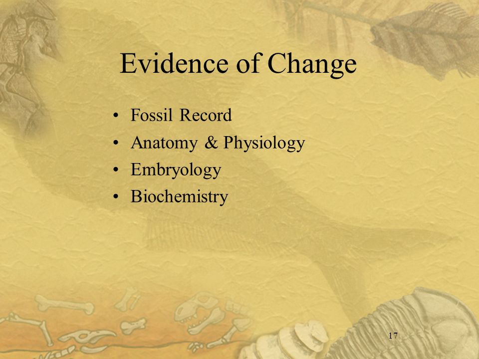 17 Evidence of Change Fossil Record Anatomy & Physiology Embryology Biochemistry