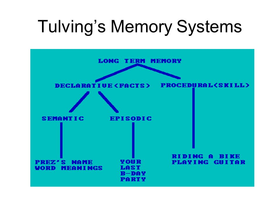 Tulving's Memory Systems