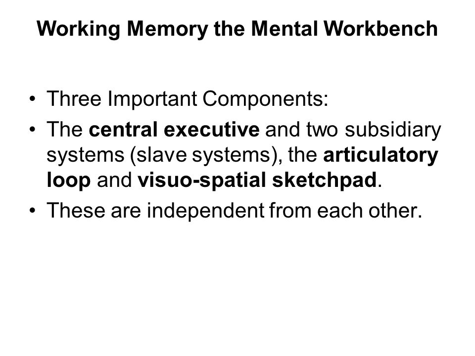 Working Memory the Mental Workbench Three Important Components: The central executive and two subsidiary systems (slave systems), the articulatory loop and visuo-spatial sketchpad.