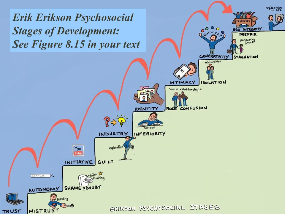 the eight stages of development in eriksons stages of psychosocial development