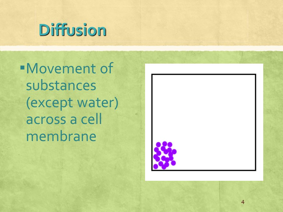 Diffusion ▪ Movement of substances (except water) across a cell membrane 4