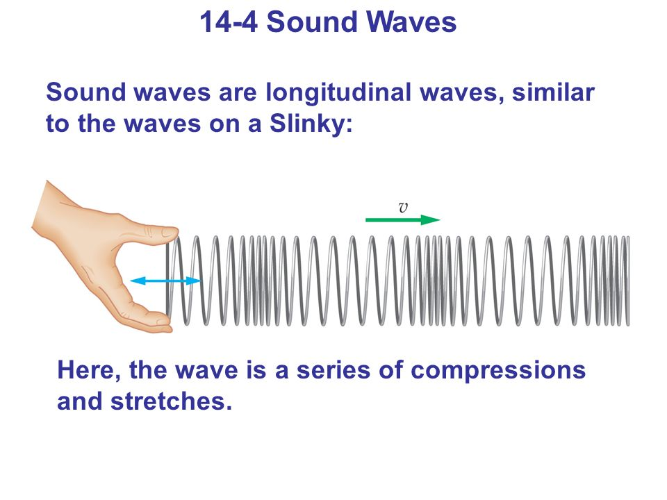 14-4 Sound Waves Sound waves are longitudinal waves, similar to the waves on a Slinky: Here, the wave is a series of compressions and stretches.