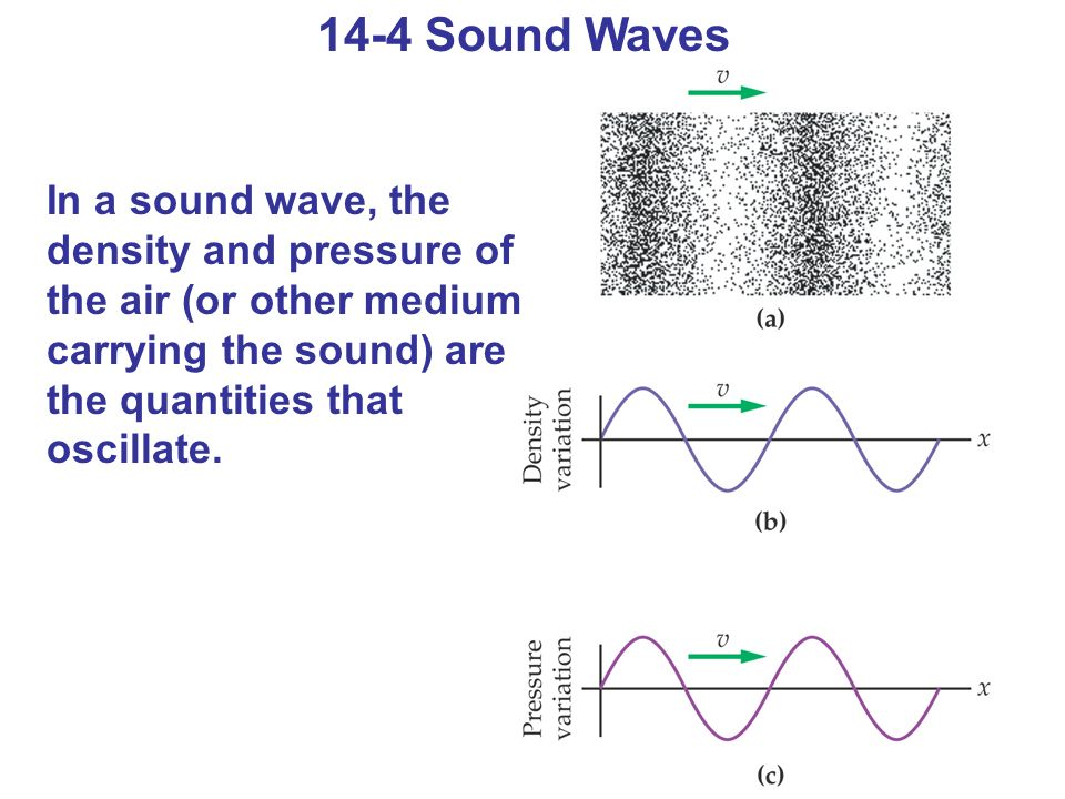 14-4 Sound Waves In a sound wave, the density and pressure of the air (or other medium carrying the sound) are the quantities that oscillate.