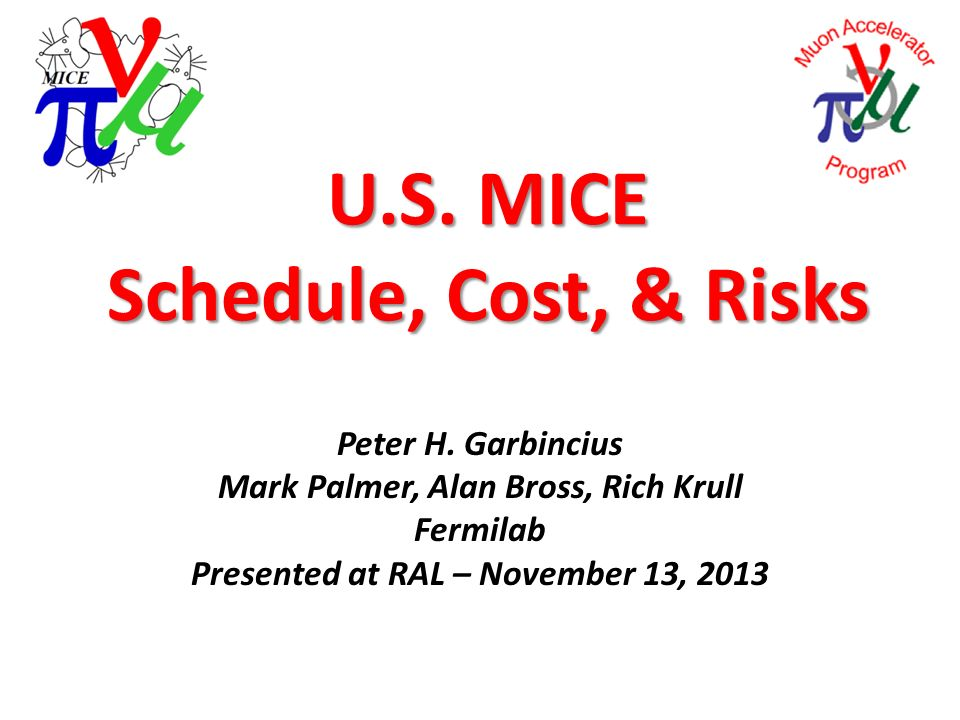 U.S. MICE Schedule, Cost, & Risks Peter H.
