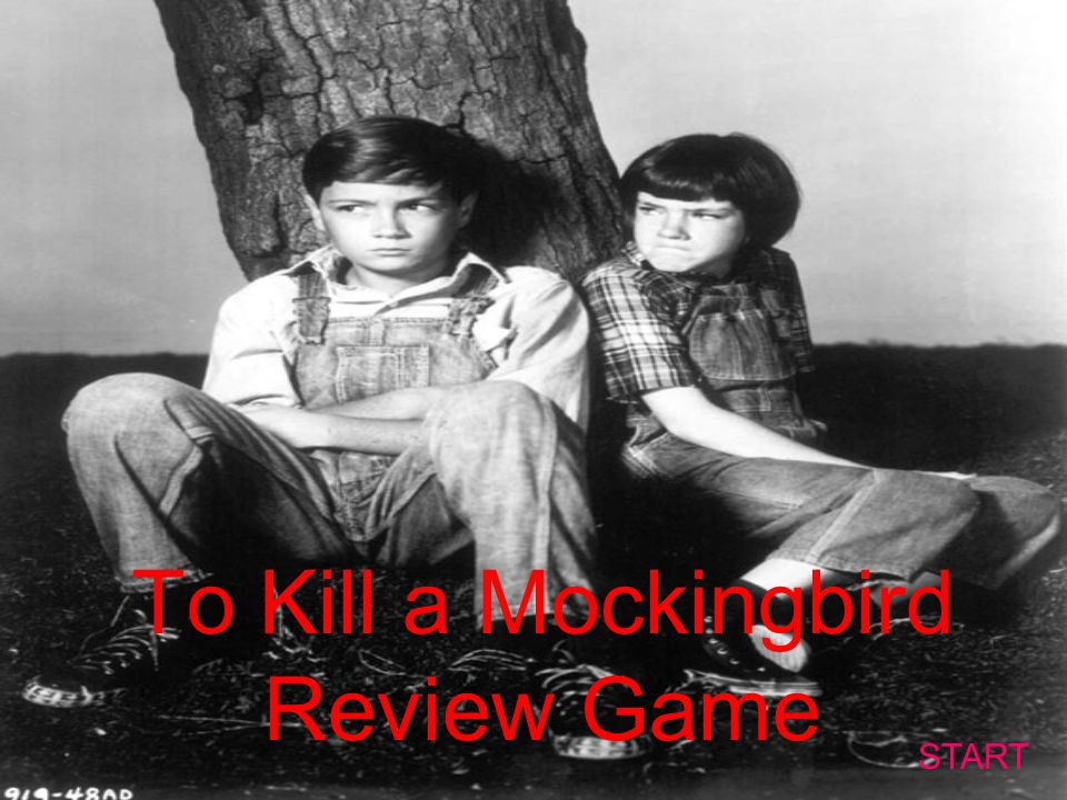 I need 2 quotes from to kill a mocking bird?