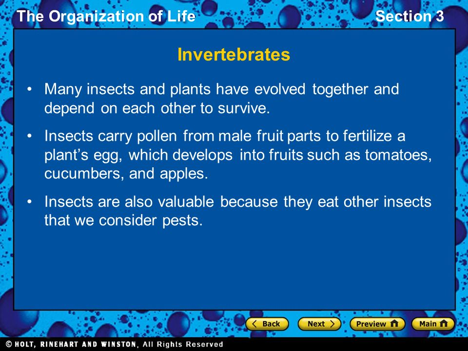 The Organization of LifeSection 3 Invertebrates Many insects and plants have evolved together and depend on each other to survive.
