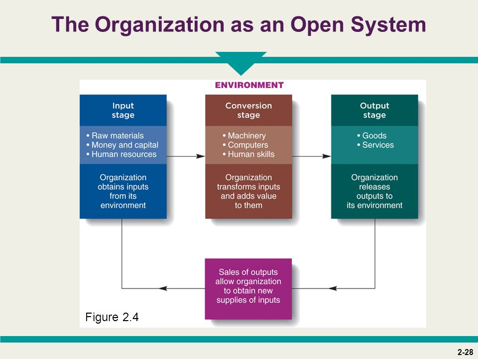 2-28 The Organization as an Open System Figure 2.4