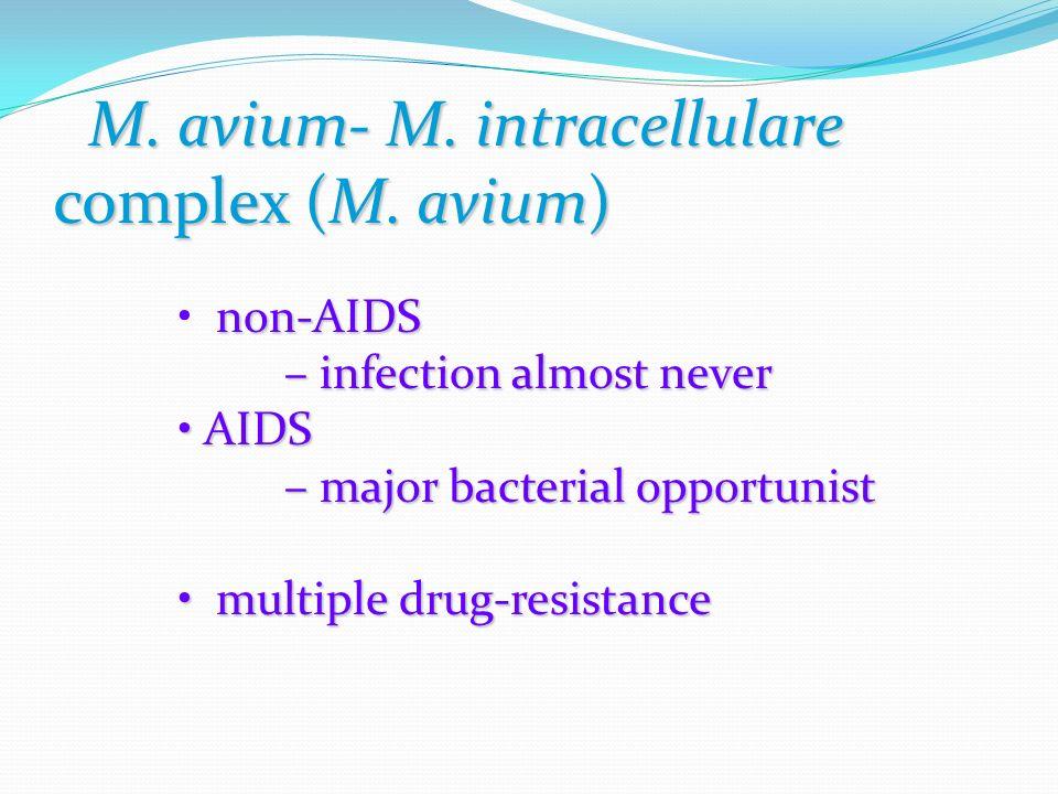 M. avium- M. intracellulare complex (M.