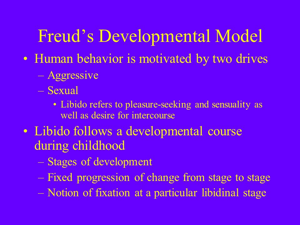 Freud's Developmental Model Human behavior is motivated by two drives –Aggressive –Sexual Libido refers to pleasure-seeking and sensuality as well as desire for intercourse Libido follows a developmental course during childhood –Stages of development –Fixed progression of change from stage to stage –Notion of fixation at a particular libidinal stage
