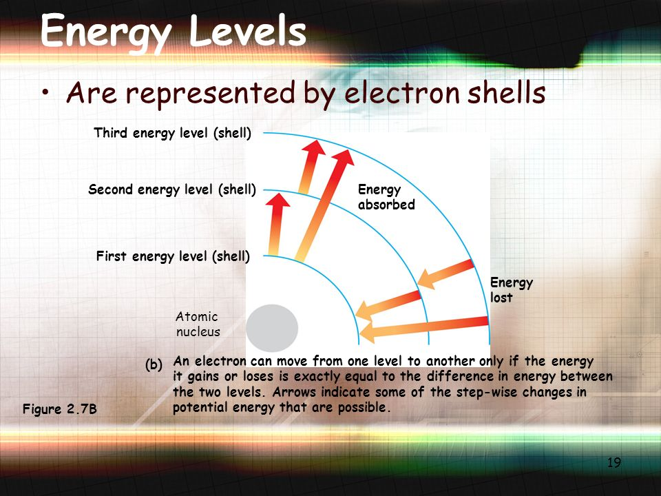19 Energy Levels Are represented by electron shells Third energy level (shell) Second energy level (shell) First energy level (shell) Energy absorbed Energy lost An electron can move from one level to another only if the energy it gains or loses is exactly equal to the difference in energy between the two levels.