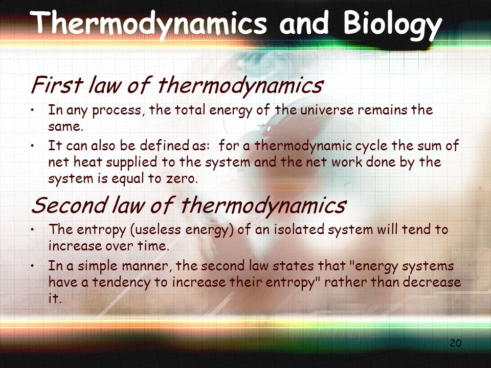 Thermodynamics and Biology First law of thermodynamics In any process, the total energy of the universe remains the same.