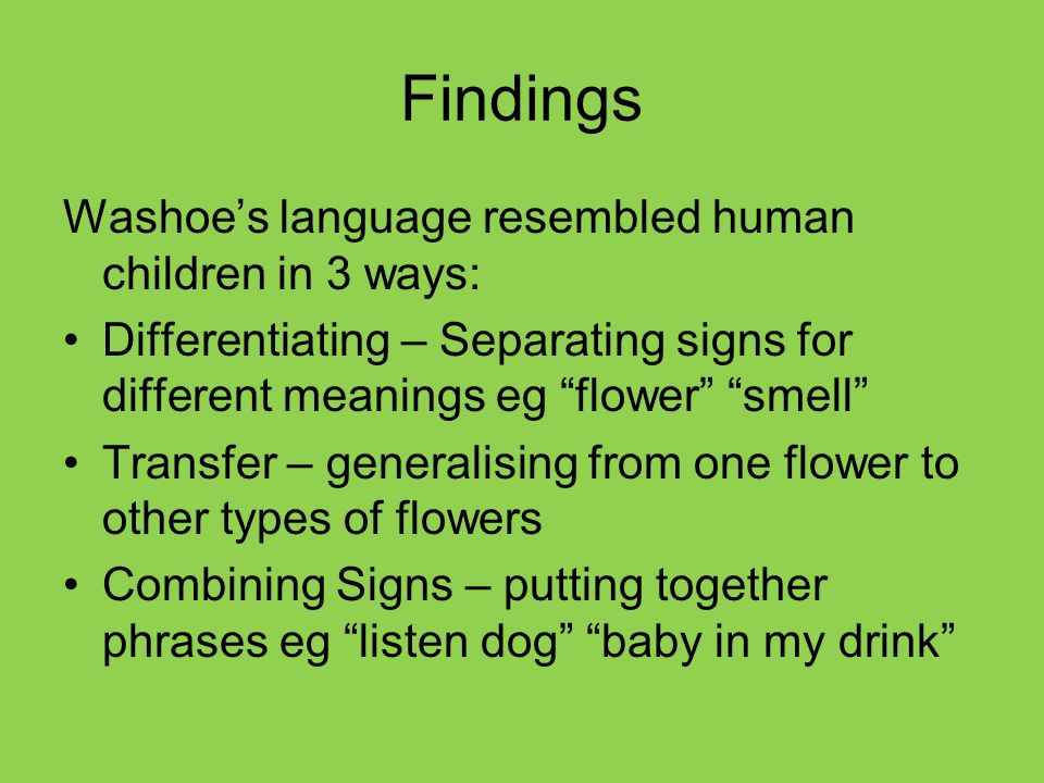Findings Washoe's language resembled human children in 3 ways: Differentiating – Separating signs for different meanings eg flower smell Transfer – generalising from one flower to other types of flowers Combining Signs – putting together phrases eg listen dog baby in my drink