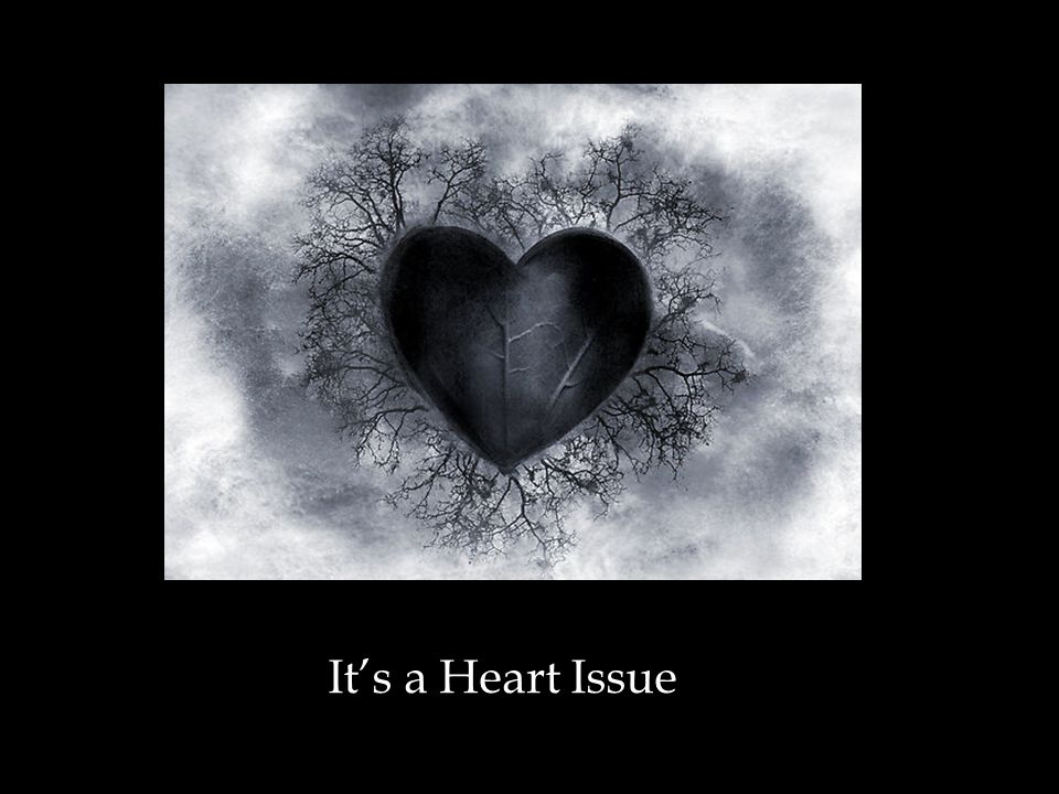 Image result for it's a heart issue