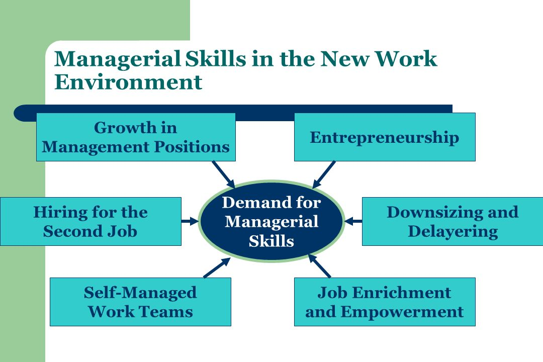Managerial Skills in the New Work Environment Demand for Managerial Skills Entrepreneurship Downsizing and Delayering Job Enrichment and Empowerment Self-Managed Work Teams Hiring for the Second Job Growth in Management Positions