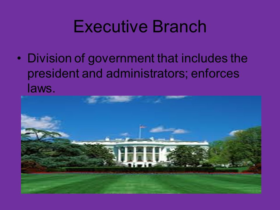 Legislative Branch Division of the government that proposes and passes bills
