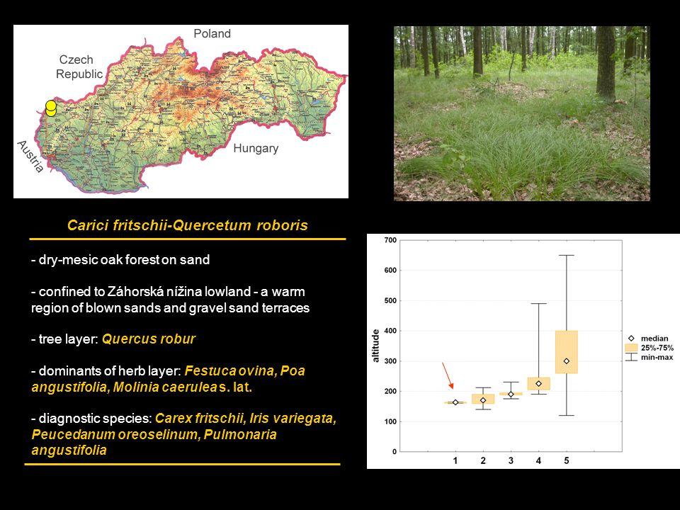 wind erosion in the czech republic