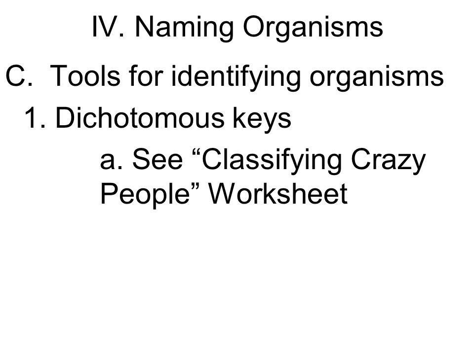 Classification of organisms worksheet high school