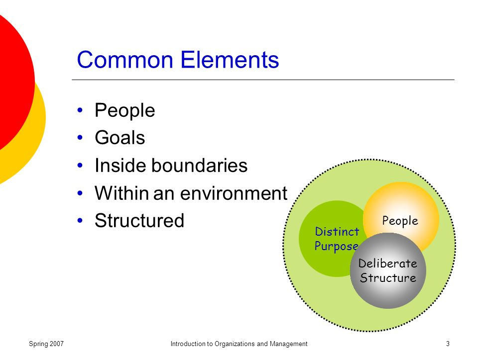 Spring 2007Introduction to Organizations and Management3 Distinct Purpose People Deliberate Structure Common Elements People Goals Inside boundaries Within an environment Structured