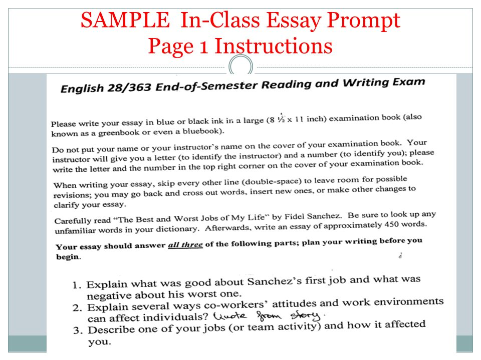 essay writing as a job Essay on job: free examples of essays, research and term papers pride essay a lot of efforts and love are put into the family and that is why the fact that this very family is the best in the world is not to be argued but taken as an axiom.
