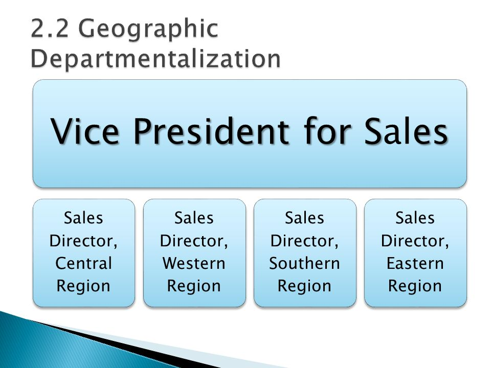 Vice President for Ses Vice President for Sales Sales Director, Central Region Sales Director, Western Region Sales Director, Southern Region Sales Director, Eastern Region