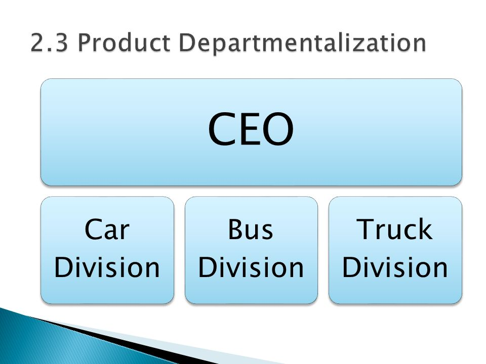 CEO Car Division Bus Division Truck Division