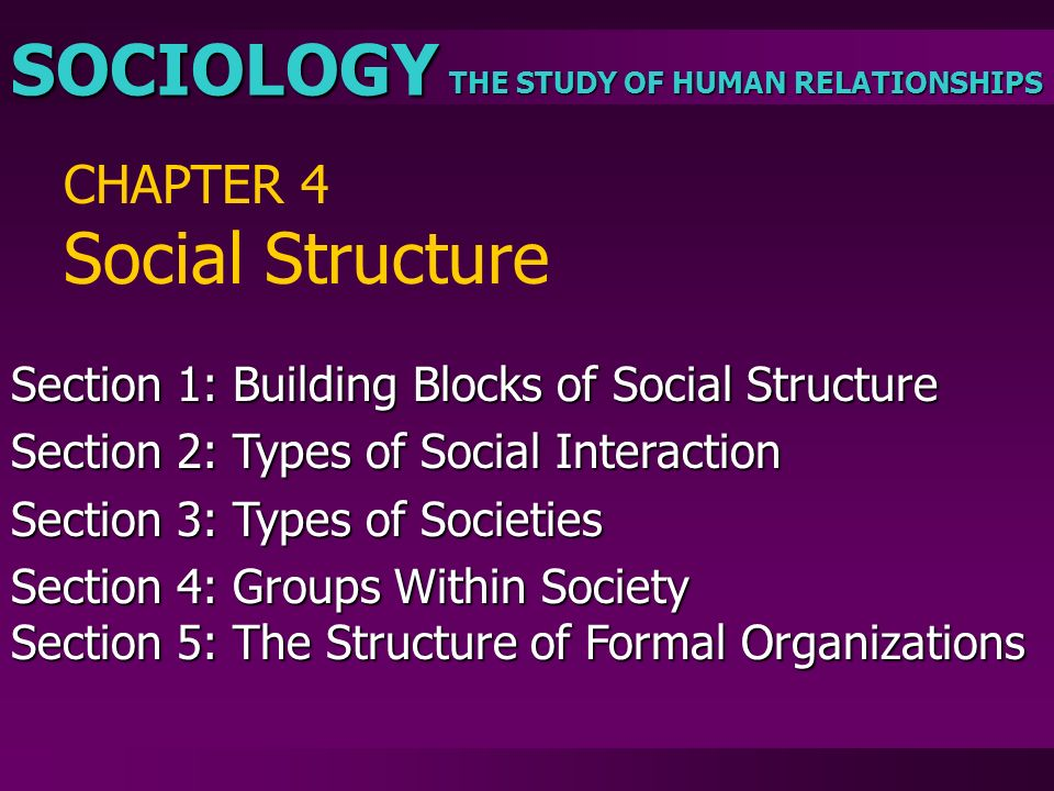 THE STUDY OF HUMAN RELATIONSHIPS SOCIOLOGY CHAPTER 4 Social Structure Section 1: Building Blocks of Social Structure Section 2: Types of Social Intera