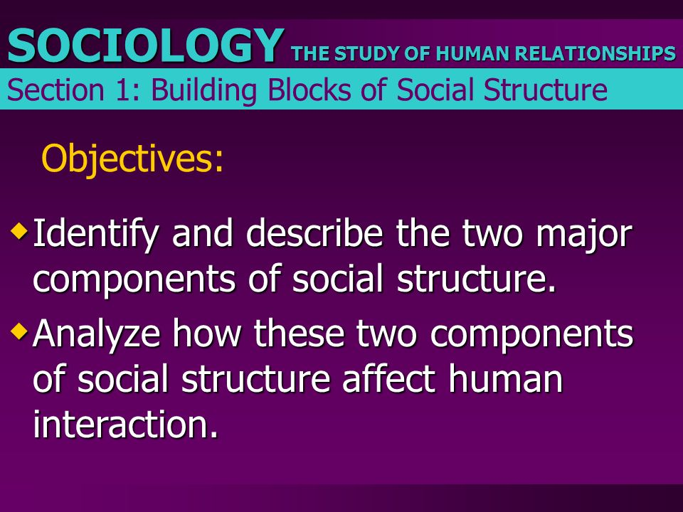 THE STUDY OF HUMAN RELATIONSHIPS SOCIOLOGY Objectives:  Identify and describe the two major components of social structure.  Analyze how these two c