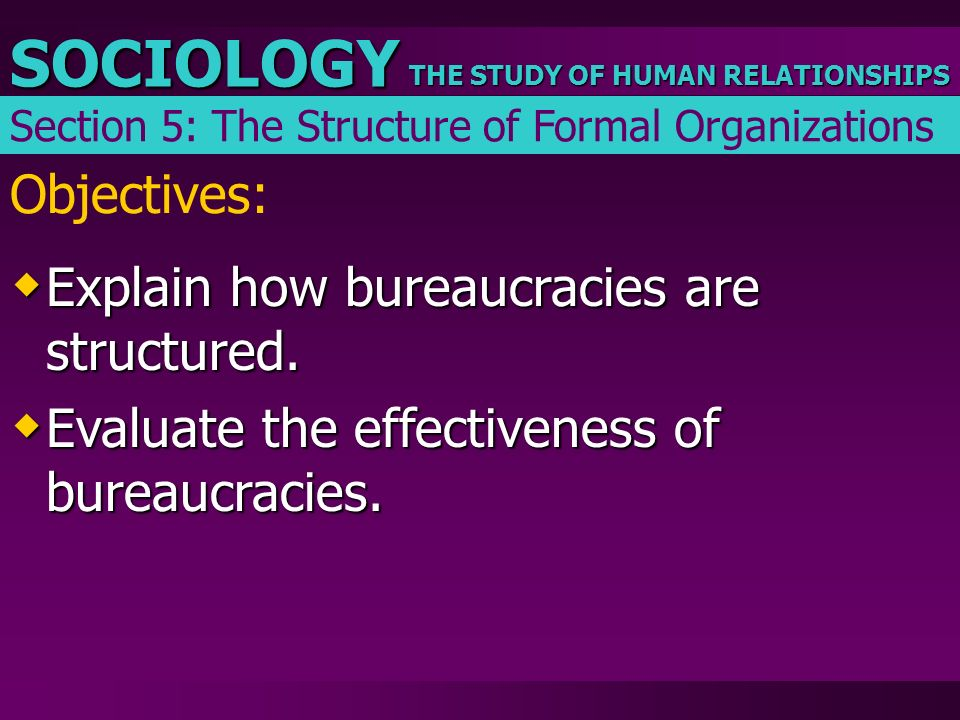 THE STUDY OF HUMAN RELATIONSHIPS SOCIOLOGY Objectives:  Explain how bureaucracies are structured.  Evaluate the effectiveness of bureaucracies. Sect