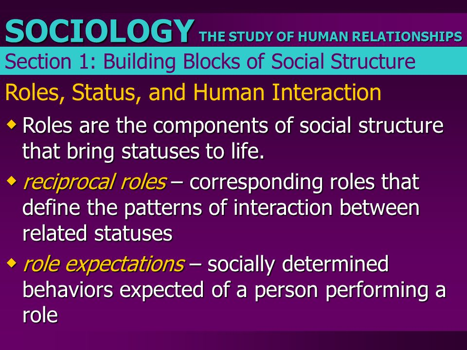 THE STUDY OF HUMAN RELATIONSHIPS SOCIOLOGY Roles, Status, and Human Interaction  Roles are the components of social structure that bring statuses to