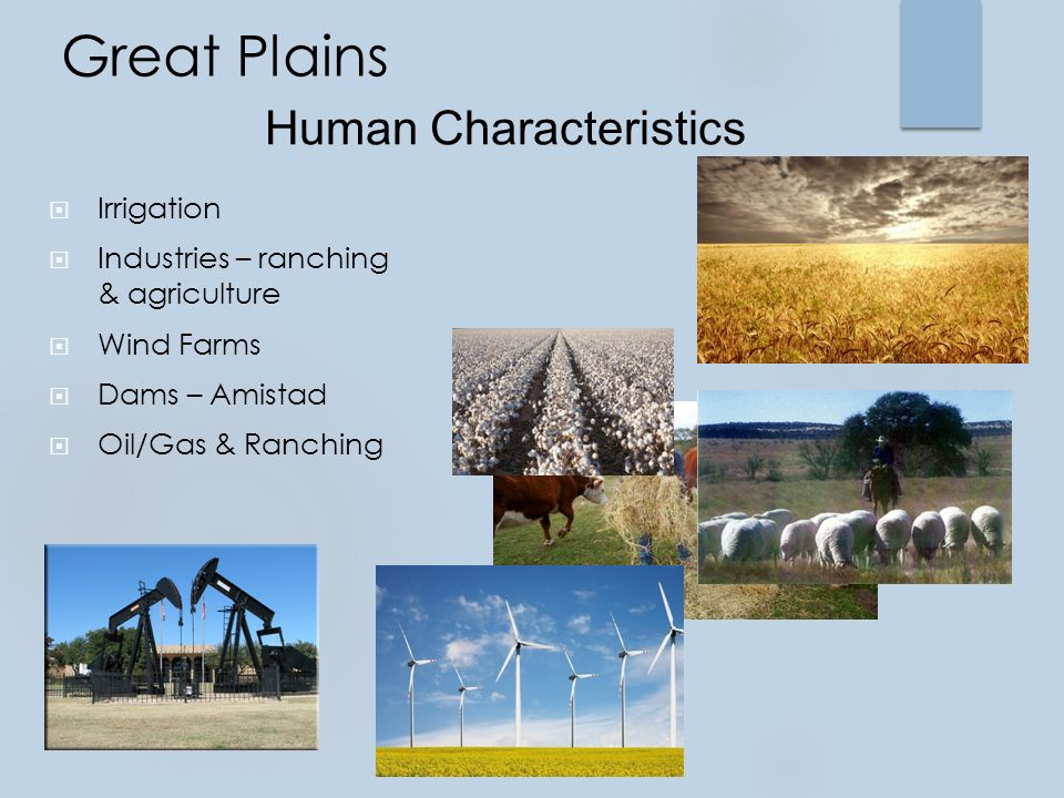 Great Plains  Irrigation  Industries – ranching & agriculture  Wind Farms  Dams – Amistad  Oil/Gas & Ranching Human Characteristics