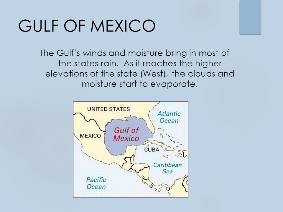 GULF OF MEXICO The Gulf's winds and moisture bring in most of the states rain.