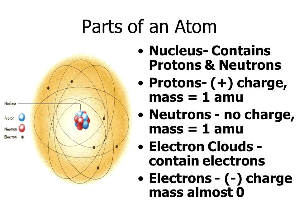 Parts of an Atom Nucleus- Contains Protons & Neutrons Protons- (+) charge, mass = 1 amu Neutrons - no charge, mass = 1 amu Electron Clouds - contain electrons Electrons - (-) charge mass almost 0