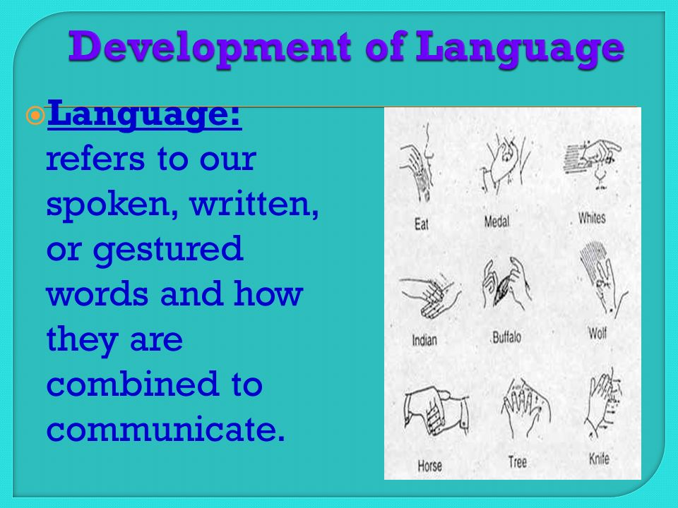  Language: refers to our spoken, written, or gestured words and how they are combined to communicate.