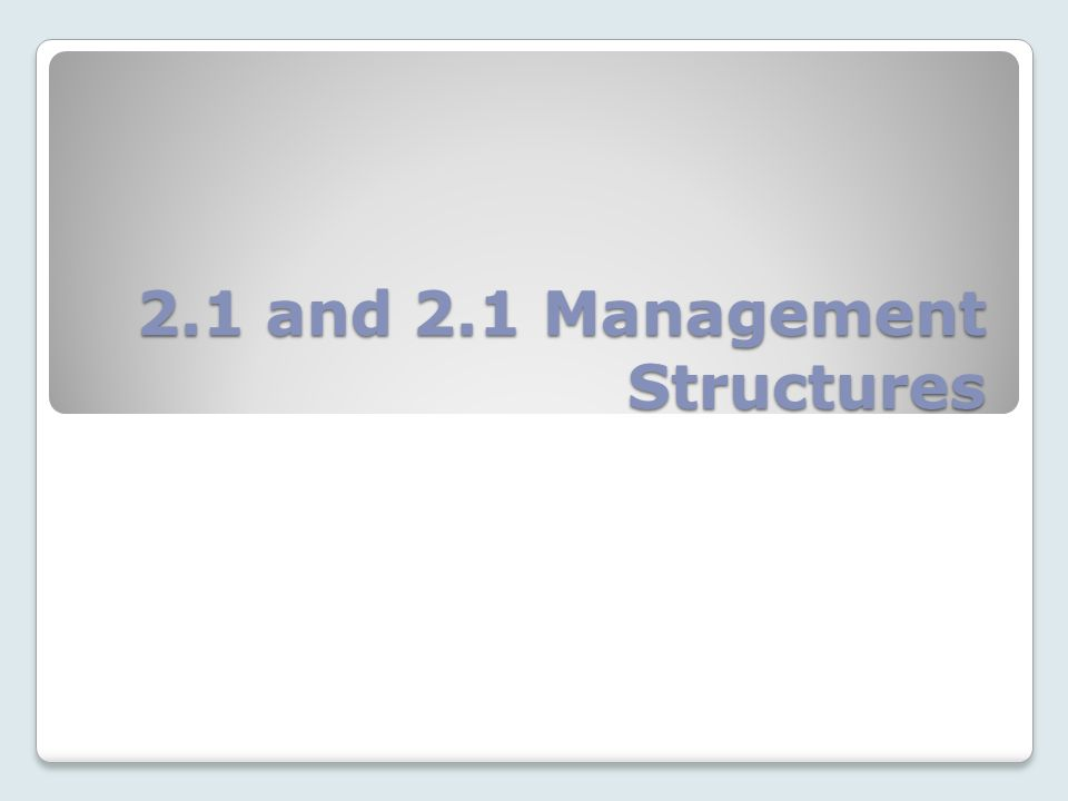 2.1 and 2.1 Management Structures